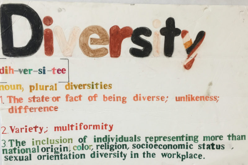 Our Summer Camp Theme is Diversity